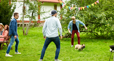 5 Party Tips for Pet Owners | PetCoach