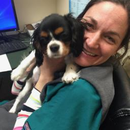 Vet Q&A: Pet Related Questions and Answers | PetCoach